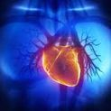 Cardiologo Rho